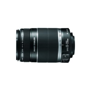 Canon EF-S 55-250mm f/4-5.6 IS(рст)